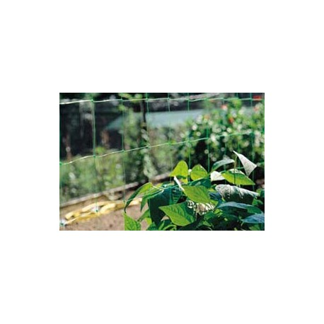 RETE SOLANIA ORTAGGI CM200 CON.MT10